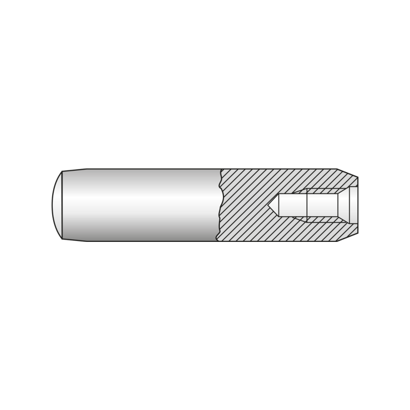 Stift Cilindric Filet Interior Forma D 7979 Otel-8x 24