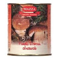 Mazza - Ciuperci della...