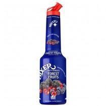 Pulpa Fructe de Padure 100% Concentrat Piure Fructe Mixer 1 litru
