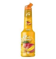 Pulpa Mango 100% Concentrat Piure Fructe Mixer 1 litru