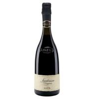 Vin Spumant Rosu Lambrusco DOP Reggiano Brut Scaglietti Donelli 0.75 l