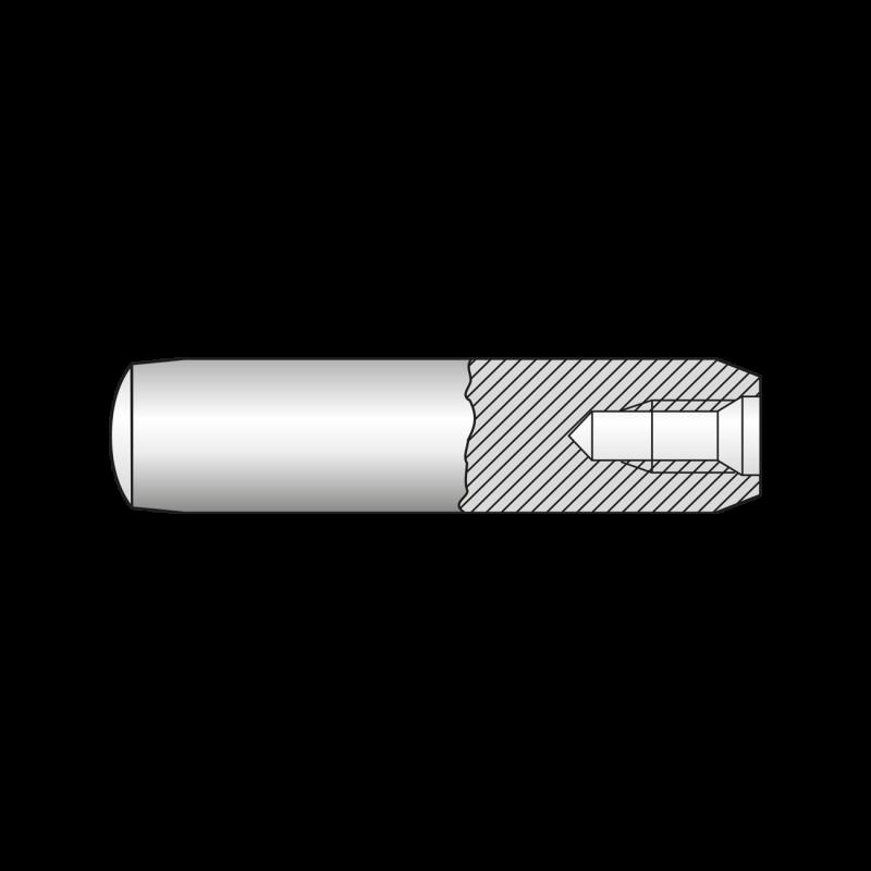"Stift Cilindric cu Filet Interior Forma ""d"" DIN 7979, Otel"