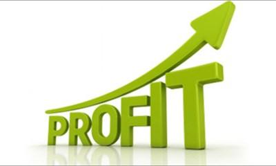 Cifra de Afaceri - Profit